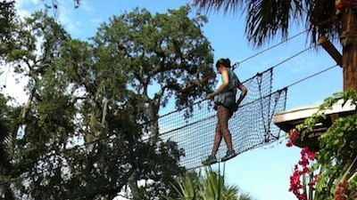 Look Out Indiana Jones: A Zip Line Tour Over Alligators in St. Augustine